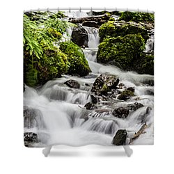 Shower Curtain featuring the photograph Cool Waters by Suzanne Luft