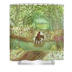 Shower Curtain featuring the painting Cooling Off by Tracey Williams