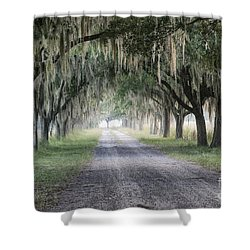 Coosaw Fog Avenue Of Oaks Shower Curtain