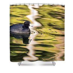 Shower Curtain featuring the photograph Coot Reflected by Kate Brown