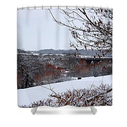 Copper Tones Shower Curtain