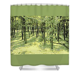 Copse Of Trees Sunlight Shower Curtain by Tom Wurl