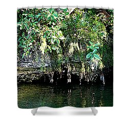 Coral Bluffs Shower Curtain by Janis Lee Colon