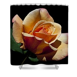 Shower Curtain featuring the photograph Coral Caper by Doug Norkum