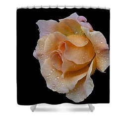 Shower Curtain featuring the photograph Coral Cutie by Doug Norkum
