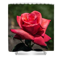 Coral Rose Shower Curtain