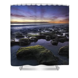 Coral Sea Shower Curtain by Debra and Dave Vanderlaan
