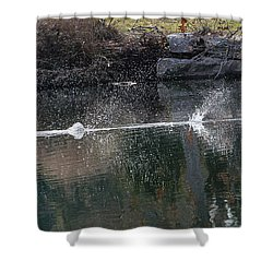 Cormorant Take-off Shower Curtain