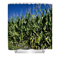 Corn And Wildflowers Shower Curtain