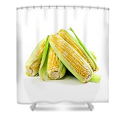 Corn Ears On White Background Shower Curtain