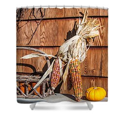 Corn Shower Curtain by Guy Whiteley