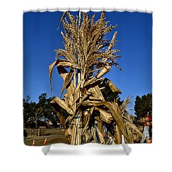Shower Curtain featuring the photograph Corn Stalk by Michael Gordon