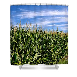 Cornfield And Clouds Shower Curtain