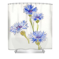 Shower Curtain featuring the painting Cornflowers by Stephanie Grant