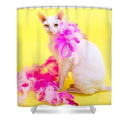 Cornish Rex Shower Curtain by Verena Matthew