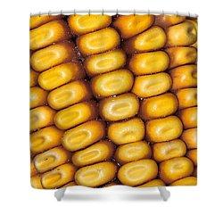 Cornrows Shower Curtain