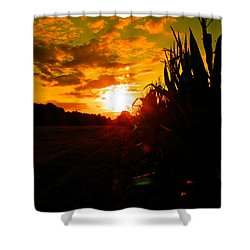 Cornset Shower Curtain by Nick Kirby
