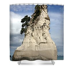 Coromandel Rock Shower Curtain