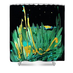 Shower Curtain featuring the painting Cosmic Island by Holly Carmichael