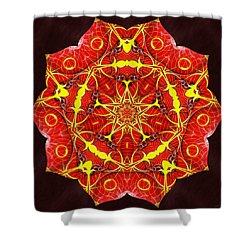 Cosmic Masculine Firestar Shower Curtain