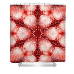 Cosmic Spiral Kaleidoscope 22 Shower Curtain