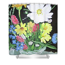 Cosmos And Her Wild Friends Shower Curtain