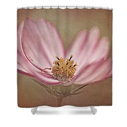 Shower Curtain featuring the photograph Cosmos by Ann Lauwers