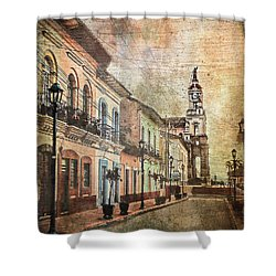 Cotacachi Morning Shower Curtain