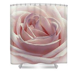 Cotton Candy Kisses Shower Curtain by Darlene Kwiatkowski