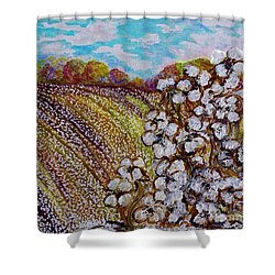 Cotton Fields In Autumn Shower Curtain by Eloise Schneider