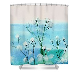 Cotton Poppies Shower Curtain by Anil Nene