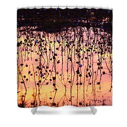 Cotton Reflections Shower Curtain