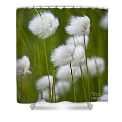 Cottonsedge Shower Curtain by Heiko Koehrer-Wagner