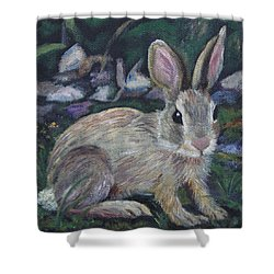 Cottontail Shower Curtain