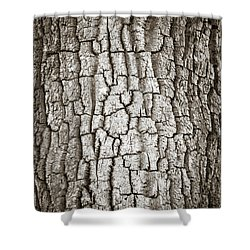 Cottonwood Bark 1 Shower Curtain by Marilyn Hunt