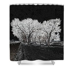 Shower Curtain featuring the digital art Cottonwood Frost by Aliceann Carlton
