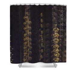 Cottonwoods In Winter Shower Curtain