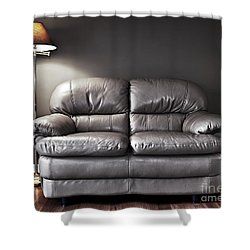 Couch And Lamp Shower Curtain by Elena Elisseeva