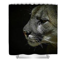 Cougar Shower Curtain by Ernie Echols
