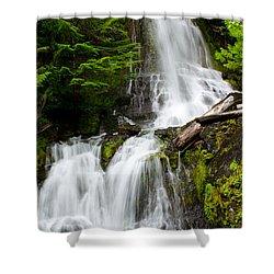 Cougar Falls Shower Curtain