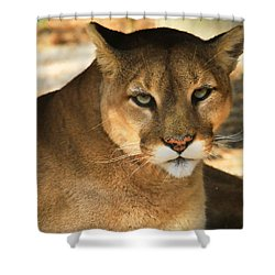 Cougar II Shower Curtain
