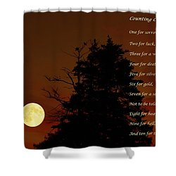 Counting Crows - Old Superstitious Nursery Rhyme Shower Curtain by Barbara Griffin