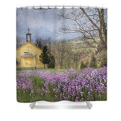 Country Charm School Shower Curtain by Lori Deiter