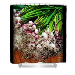 Country Kitchen - Onions Shower Curtain by Miriam Danar