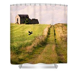 Country Lane Shower Curtain by Amanda Elwell