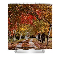 Shower Curtain featuring the photograph Country Lane In Autumn by Jerry Gammon