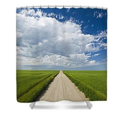 Country Road Through Grain Fields Shower Curtain by Dave Reede