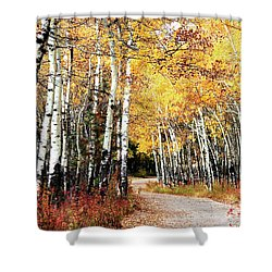Country Roads Shower Curtain by Steven Reed