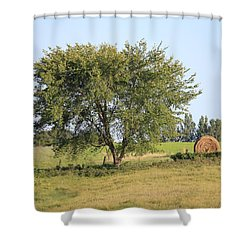 Shower Curtain featuring the photograph Country Scene by Penny Meyers