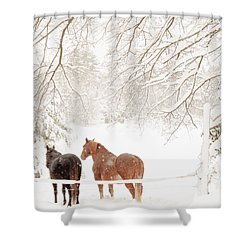 Country Snow Shower Curtain by Cheryl Baxter